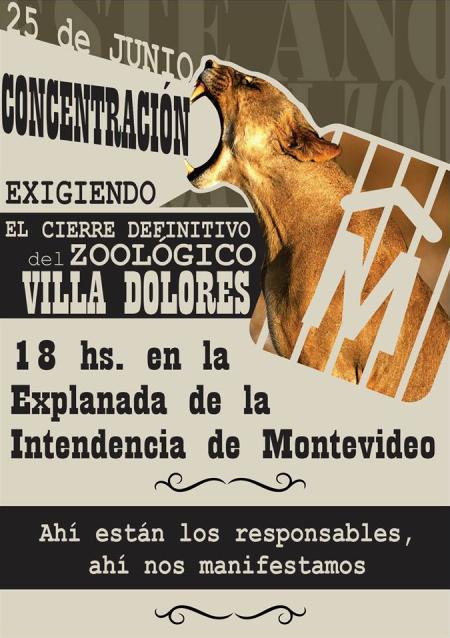zoo_25_6